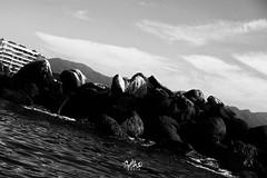lineas (betho itinerante) Tags: naturaleza textura luz sol azul atardecer mar agua playa paisaje dia movimiento bn diagonal ave cielo nubes contraste perspectiva aire olas detalles libre suave rocas linea horizonte reflejos piedras calor blanconegro tranquilidad ocano arista relajacin placentero