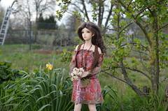 Happy Birthday - Eliza (1) (JL_the_Lion) Tags: birthday summer sun flower bag doll dress outdoor sid 7 sd gift lee bjd eliza 13 cherie kojiro my iplehouse happybirthdayeliza