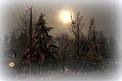 full moon2 (Woodmizer62) Tags: winter snow cold idaho moonlight harborisland postfalls