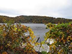 Cheat Lake Edgewater (jcsullivan24) Tags: autumn lake wv edgewater morgantown cheat