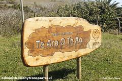 Sendero Te Ara o Te Ao - Isla de Pascua (Administracionytransportes.cl - Ariel Cruz Pizarro) Tags: chile viaje camino da sendero experiencia rapanui ranokau bitcora isladepascua volcn parquenacional viajero relato orongo conaf arielcruzpizarro tearaoteao