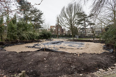 2016-02-18-10h48m36.BL7R8416 (A.J. Haverkamp) Tags: amsterdam zoo thenetherlands prairiedog artis dierentuin prairiehond cynomys canonef1740mmf4lusmlens httpwwwartisnl