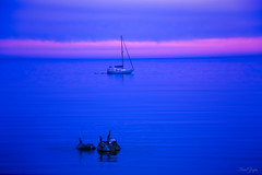 Amanecer. (Ariel NZ) Tags: azul uruguay mar rosa amanecer calma piriapolis profundo yate