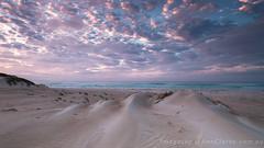 Mezzo (Images by Ann Clarke) Tags: ocean beach clouds surf pastel australia textures southaustralia wreckbeach eyrepeninsula wwwimagesbyannclarkecom coastaldandunes