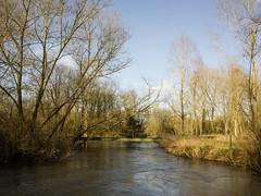 20160130-GR012940-Edit (fleetingphotons) Tags: fishing ricohgr kennet wasingestate warrenbeat