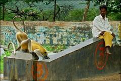TOM_3160A1Aw8 (tomas teneketzis) Tags: india color nikon varanasi d200 32 benares tomasteneketzis teneketzis