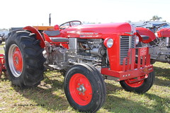 1963 Massey Ferguson 35 Diesel Tractor (Gerald (Wayne) Prout) Tags: usa canon diesel florida 35 1963 prout polkcounty fortmeade masseyferguson canoneos60d geraldwayneprout 2016antiqueengineandtractorswapmeet floridaflywheelersantiqueengineclub 1963masseyferguson35dieseltractor