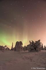 Finland, Iso-Syte, winter 18 (Nic Stoetman) Tags: trees winter sunlight snow cold ice finland europa europe sneeuw natuur aurora lapland borealis koud 2016 poollicht isosyte