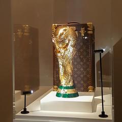 20160207_110139.jpg (loic4467) Tags: paris france football ledefrance exposition fr fifaworldcup louisvuiton grandpalais