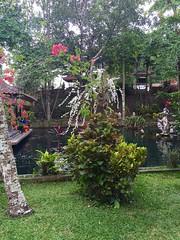 Gunung Kawi Sebatu (another_noone) Tags: bali indonesia gunung sebatu kawi