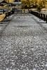 IMG_1617s (francois f swanepoel) Tags: wood sea lighthouse water lunch concrete bridges perspectives capetown infrared restoration brug naval atlanticocean guano milnerton beton 1960 westerncape woodbridgeisland atlantieseoseaan ligtoring