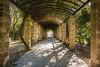 Zappeion Gardens (v.theo) Tags: athens greece zappeion rx100 rx100m2