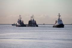 HMS Ambush 16th Jan 2016 #3 (JDurston2009) Tags: unitedkingdom plymouth submarine ssn royalnavy plymouthsound astuteclass s120 sdadept sdcareful hmsambush sdforceful