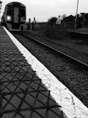 Dyffryn Ardudwy (Rhisiart Hincks) Tags: blackandwhite bw blancoynegro station wales gare cymru railway gales estacion wallis gwynedd blancinegre galles tigar blancetnoir rheilffordd chemindefer meirionnydd gorsaf  duagwyn dyffrynardudwy kembre zwartenwit gallas henthouarn trenbide walia geltoki porzhhouarn anbhreatainbheag kimrio uels zuribeltz feketefehr kembra  dubhagusbn gwennhadu  siyahvebeyaz   valbretland tihenthouarn juodairbalta schwarzundweis stisean hynshorn rathadiarainn ernabl  mustajavalkoinen burdinbide  crnoibelo melnsunbalts negruialb achuimrigh dubhagusgeal  rnoinbelo