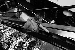 Escalator Maintenance (tangent) Tags: sanfrancisco blackandwhite bw escalator highcontrast repair voyeurism sfpeople brokensf