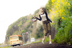 Route136. (kiyurohi_d) Tags: japan    dollfiedream    ddh07