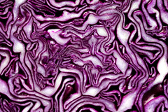 Macro - Cabbage (AliceWilliamsPhotography) Tags: england food abstract macro closeup canon lens photography prime photo patterns 85mm vegetable lightroom 550d canon550d