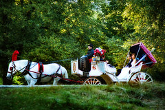 Just married (MacCabri) Tags: nyc wedding horse newyork bride centralpark manhattan