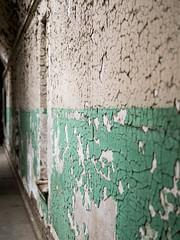 Week 18: Texture (Brnice) Tags: texture philadelphia wall paint historic jail philly phl esp abandonned easternstatepenitentiary flakingpaint dogwoodweek18