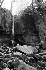 il suono dei luoghi incantati (filippo.bassato) Tags: panorama canon natura cielo roccia sassi sentiero muschio collina cascata incontaminato cascatella eos40d schivanoia campagnaveneta filippobassato