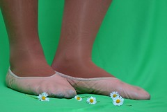 Sedmikrsky (058) (Merman cviky) Tags: ballet socks tights socken pantyhose slipper nylon slippers spandex lycra medias nylons balletslippers strumpfhose strumpfhosen ballerinas collant collants cviky ballettschuhe schlppchen ballettschuh ballettschlppchen elastan pikoty punoche