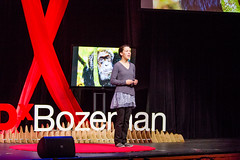Kira Cassidy (TEDxBozeman) Tags: yellowstone elders aging wolves confluence matriarch influence matriarchal wolfpacks yellowstonepark tedx matriarchalsociety yellowstonewolves survivalpack whalepods tedxbozeman matriarchalinfluence aginganimalscanteachhumans aginginthewild valueofelders tedxbozeman2016 survivalmothergrandmotherparentparentingelephantapesculturebiology