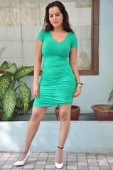 Bollywood Actress Meghna Patel Photos Set-4-HOT PHOTOS (45)