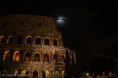 Rome (Claudia Rolando) Tags: street rome roma bird night photography monocromo colours e bianco nero gabbiano unica fori colosseo allaperto anticaroma seibellissima caputmunti