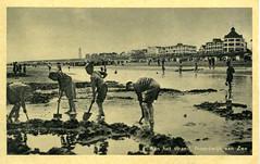 1063 - PC Noordwijk ZH (Steenvoorde Leen - 2.1 ml views) Tags: history strand boulevard postcards noordwijk kust ansichtkaart noordwijkaanzee badplaats oldcards oudnoordwijk