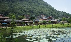 DSC02030 (Sepistö) Tags: nepal lake bicycling pokhara phewalake westernregion seppoenarvi