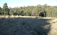 Lot 21 Blair Close, Coolagolite NSW