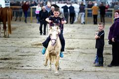 Pony Express (Frank Fullard) Tags: ireland horse irish cowboy fair pony jockey rider ballinasloe carlsberg ponyexpress horsefair fullard ponyrider frankfullard ifcarlsbergdid
