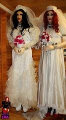 forced Rubberdoll Wedding 1 (rubberdoll_lisa1) Tags: wedding bride bridal forcedfeminization bridalplay rubberdolllatexpuppelatexdollrubberlatexfemalemaskmaskdollpuppepppchenrubberdolllisalatexcatsuitlatexkleidbondagefesselngefesselt handcuffshandcuffedchaindollyfeminizationfeminisierungcrossdresscrossdressingzwangsfeminisationtransetrannytransvestittransvestie