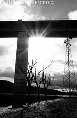 la luce (Lau.cube) Tags: santa bn ponte chiara rudere