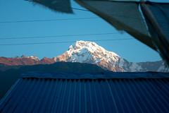 Through the lens (Pooja Pant) Tags: nepal mountains beautiful trek abc annapurna annapurnabasecamp macchapuchre