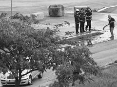 (Francesco 79) Tags: rome roma work monocromo e asfalto pioggia bianco nero buche incidente allaperto