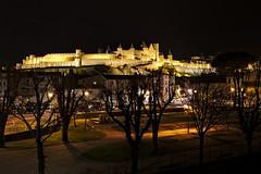 Carcassonne by night (math41photo) Tags: city france castle architecture night canon garden jardin crpuscule aude extrieur nuit chteau parc carcassonne ville forteresse languedocroussillon clairage medievalcity citmdivale canon6d
