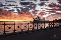 Opera on Fire (Brian Bornstein) Tags: ocean water clouds sunrise cityscape sydney nsw sydneyoperahouse sydneycity leefilters canon6d brianbornstein