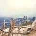 Operation Pegasus, Hill 689, 7 April 1968