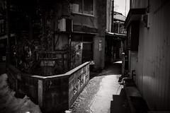 grafica_jp_flickr-1393m (grafica.tokyo) Tags: leica monochrome japan panasonic saitama summilux 15mm dg chichi f17 gm5
