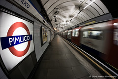 (Claire Hutton) Tags: city uk motion london station train underground subway movement metro transport tube wideangle fisheye le pimlico samyang8mm sonya6000