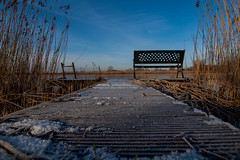 Bankje aan de Vecht (Martijn_68) Tags: sneeuw bankje vecht steiger