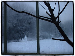 we are out there (virtually light - winterland) Tags: park winter window glass monochrome gardens snowmen botanic