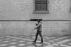 (Cazador de imgenes) Tags: madrid street winter espaa spain nikon streetphotography streetphoto invierno 16 espagne spanien spagna spanje spania  2016 spange d7000