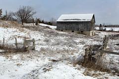 Winter Blue (Doris Burfind) Tags: winter snow ice barn rural fence countryside freeze ballinifad