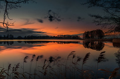 The tranquility of dusk (piotrekfil) Tags: trees winter sunset lake nature water reflections landscape evening twilight pentax dusk poland waterscape piotrfil