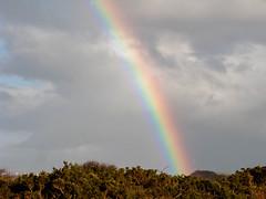 rainbow_7819-5 (allybeag) Tags: sky coast rainbow solway hadrianscycletrack
