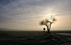 Matin d'hiver brumeux en campagne isarienne. (ggberry1967) Tags: bestcapturesaoi elitegalleryaoi