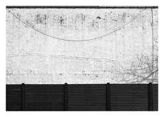 (Gene Daly) Tags: newyorkcity blackwhite canonfd50mmf18 chromenose genedaly olympusem5 p2070277