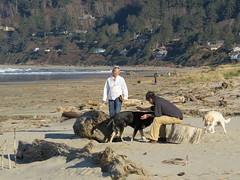 A rare warm day in February (JM1Kendall) Tags: beach oregon driftwood manzanita sx50